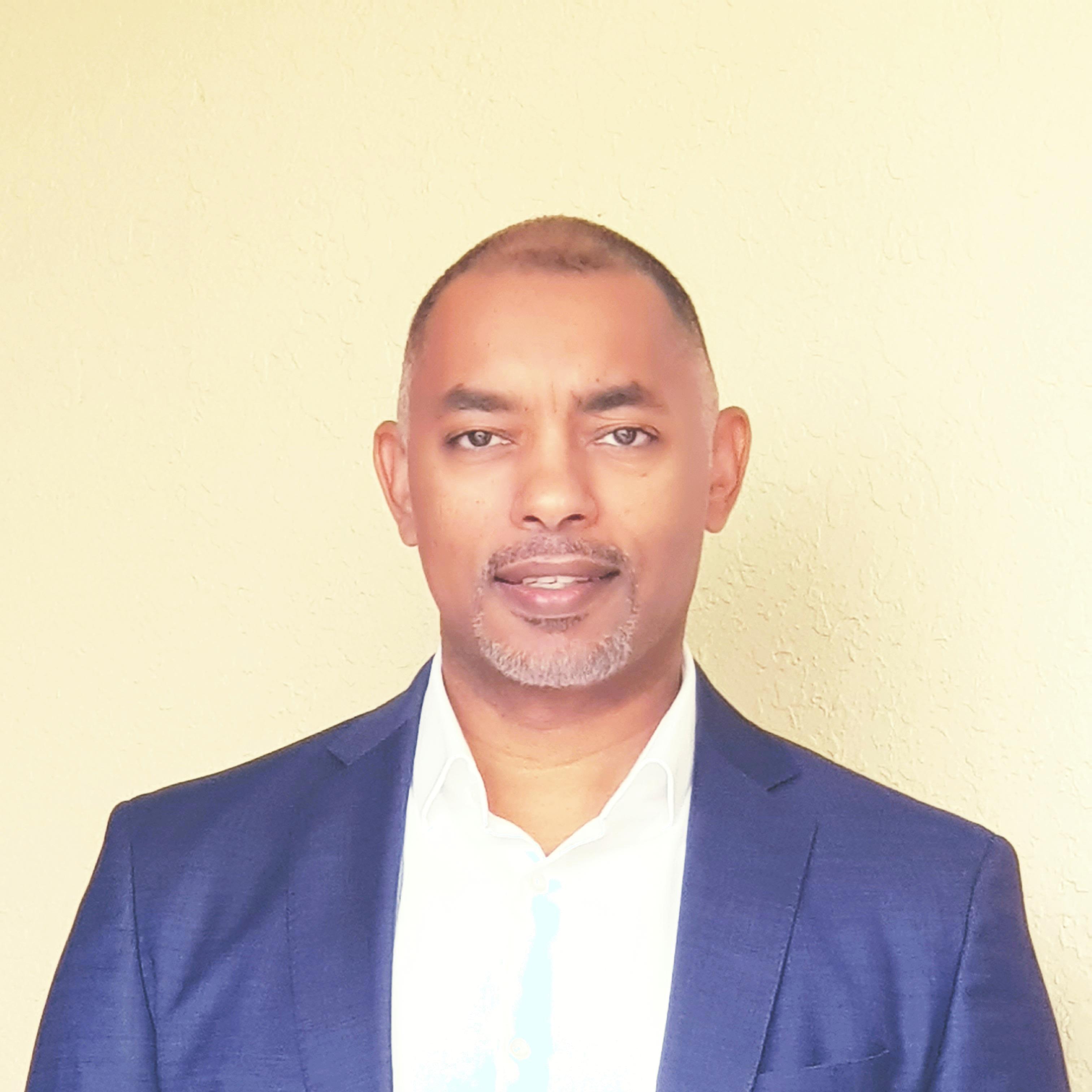 Hisham E. Nourin